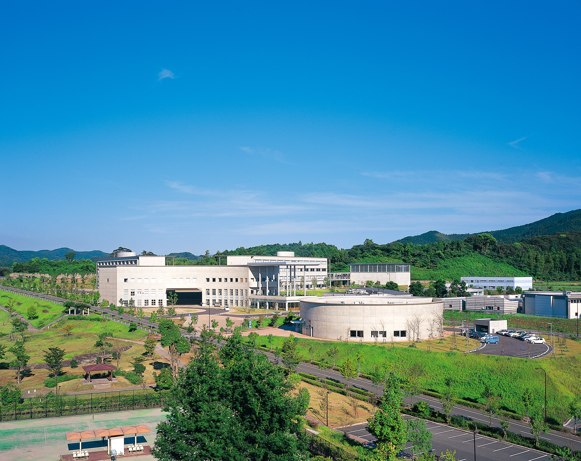 赤十字 国際 日本 看護 大学 九州